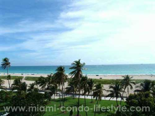Congress South Beach Vista