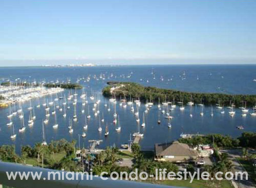 Mutiny Park Coconut Grove View